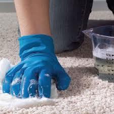 clena carpet
